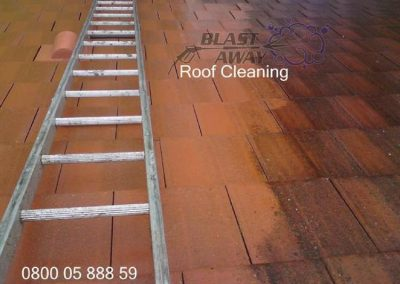 Roof Cleaning 007