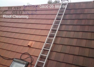 Roof Cleaning 008